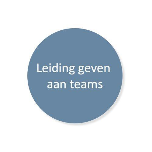 Leiderschapsontwikkeling - leidinggeven aan teams